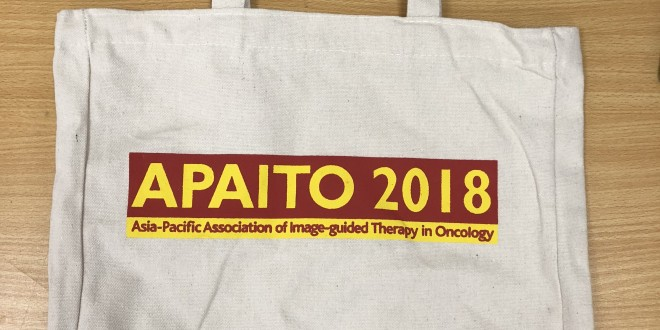 apaito-canvas-bags