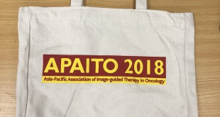apaito-canvas-bags