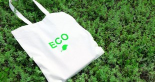 eco-shopping-bags