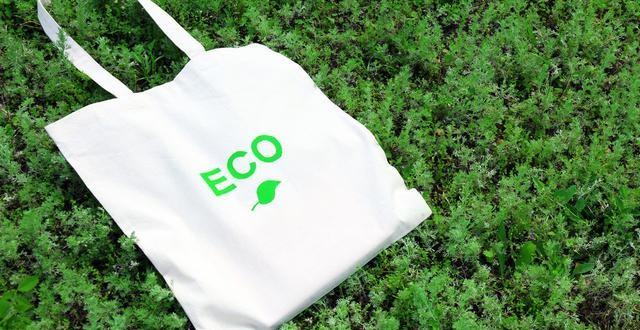 eco-shopping-bags